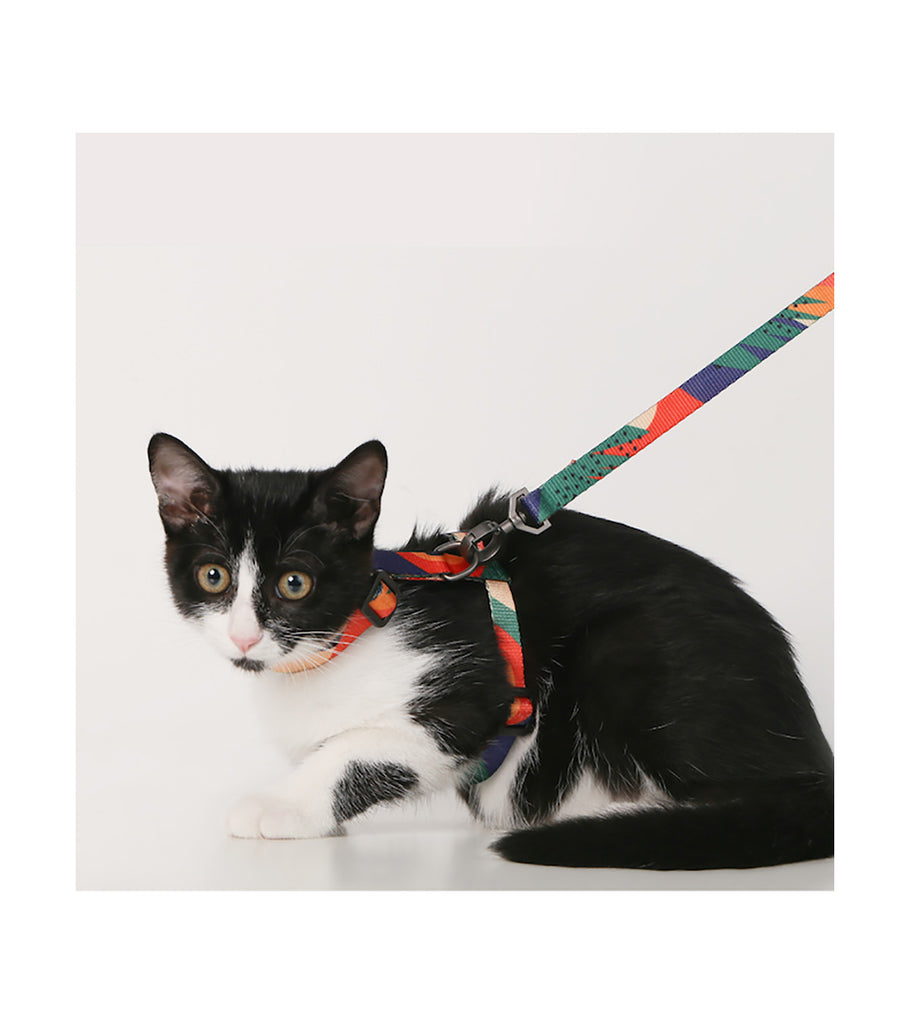 pidan Cat Harness and Leash Set