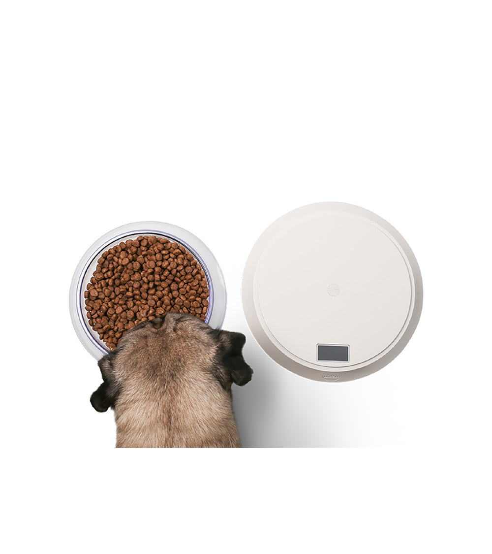 "pidan ""Volcano"" Pet Food Bowl with Digital Scale"