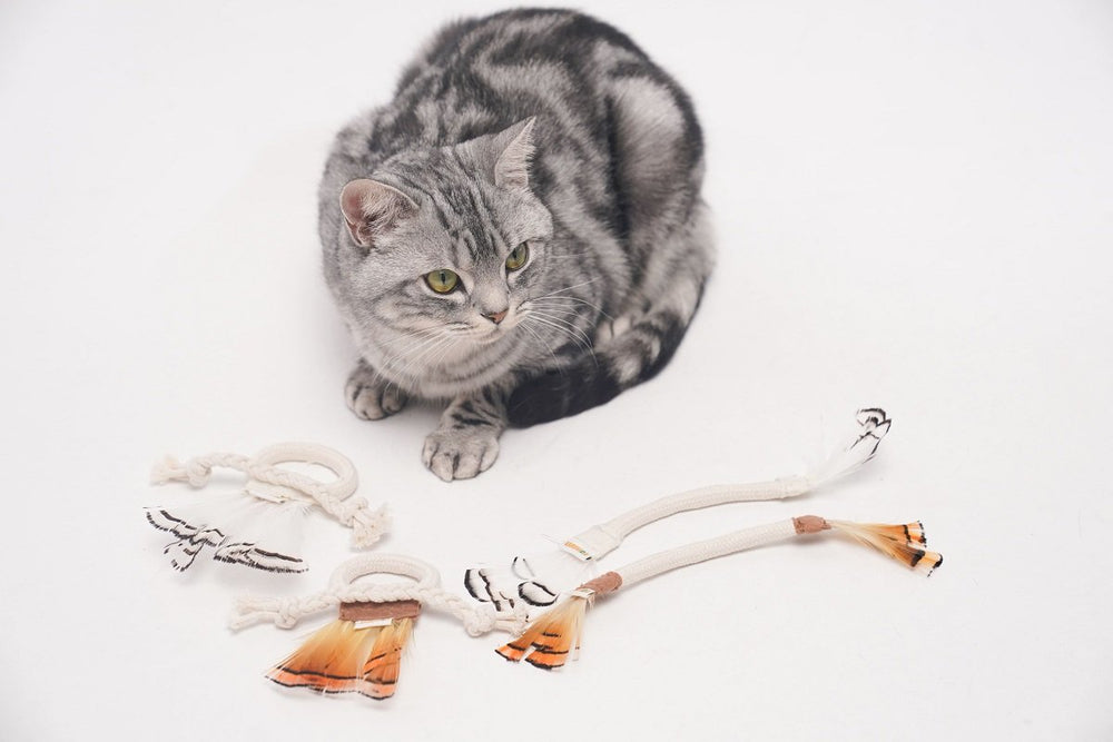 LINSLINS Cat Toy, Cotton rope feather type