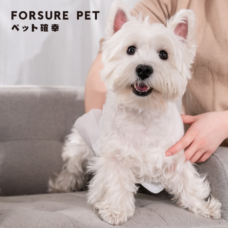 Forsure Pet Luxury Moisturizing Nourishing No-Rinse SPA Gloves for Pets