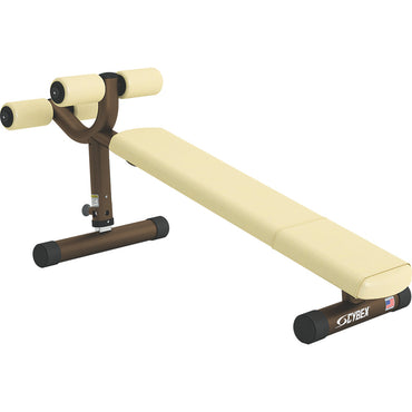Adjustable Decline Bench | Cybex