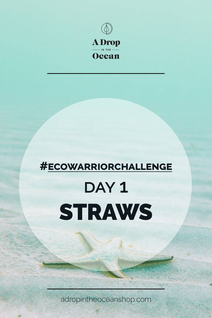 A Drop in the Ocean - #EcoWarriorChallenge Day 1 Straws