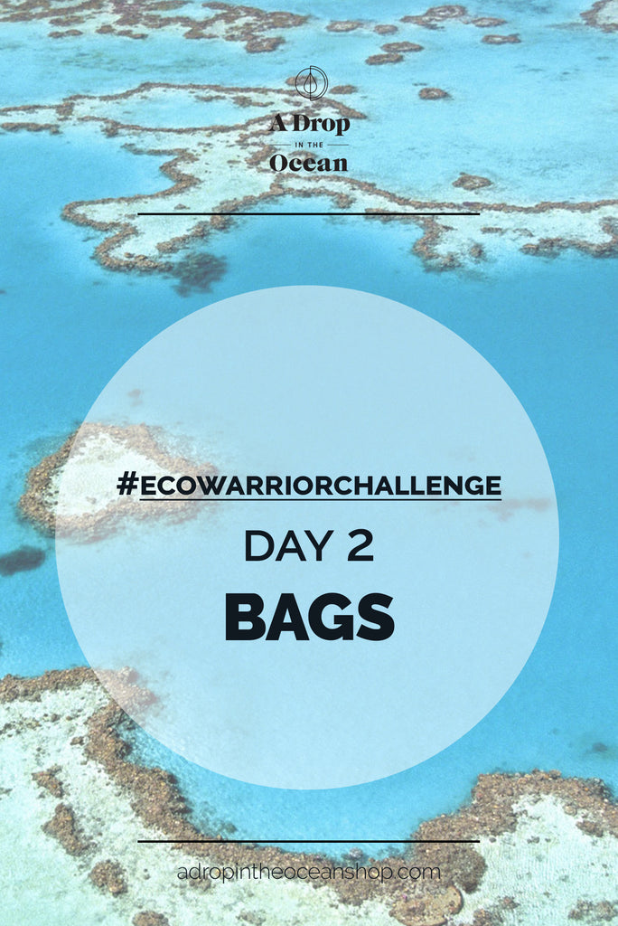 A Drop in the Ocean - #EcoWarriorChallenge Day 2 Bags