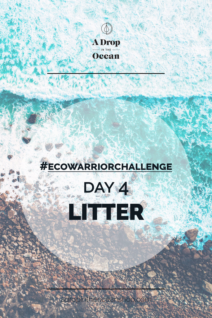 A Drop in the Ocean - #EcoWarriorChallenge Day 4 Litter
