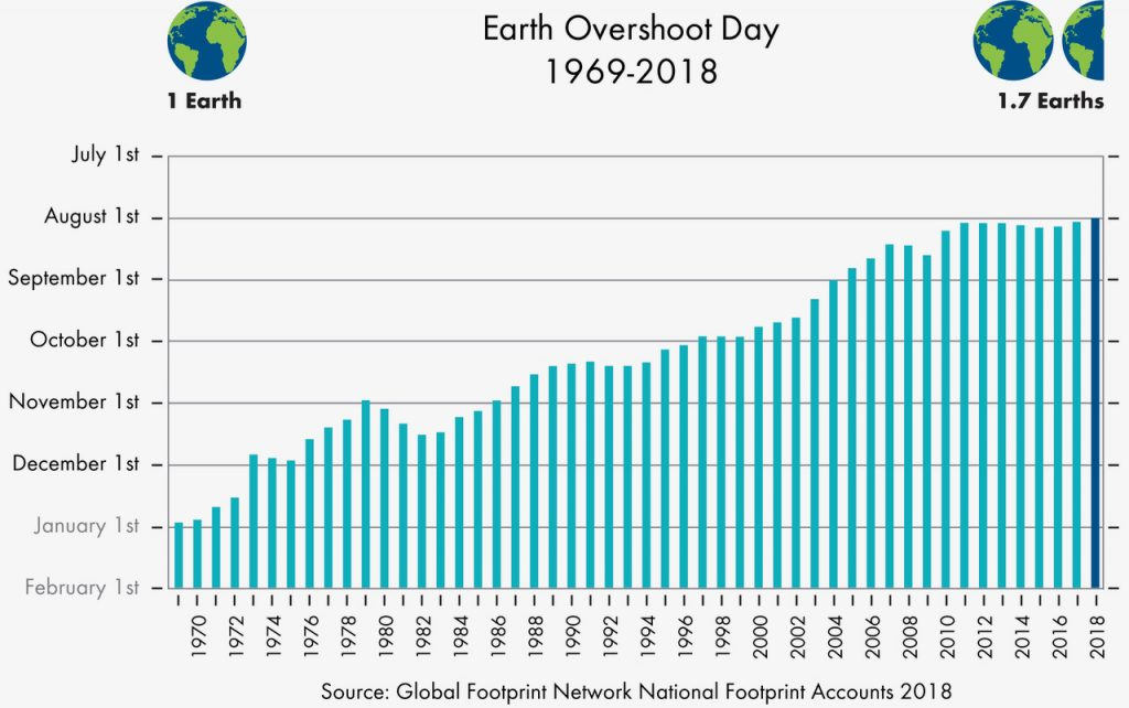 A Drop in the Ocean - Ecological Footprint of a Zero Waster