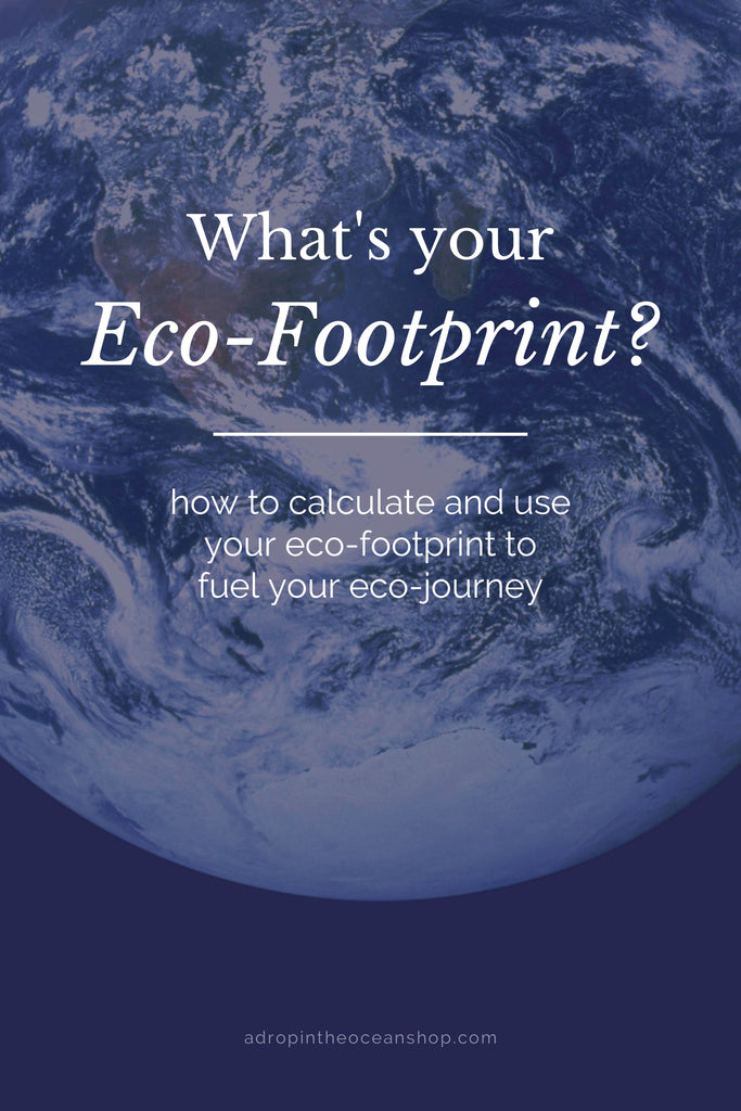 A Drop in the Ocean Tacoma Zero Waste Sustainable Living Shop What's Your Ecological Footprint