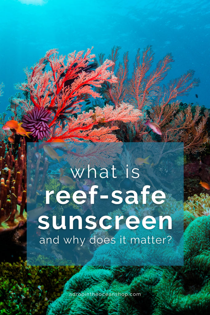 A Drop in the Ocean Tacoma Zero Waste Sustainable Living Blog What is Reef Safe Sunscreen and Why Does It Matter?