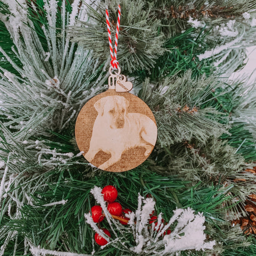 Laser Engraved Picture Ornament, 2020 Ornament, Sentimental Gift