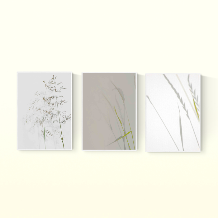 Minimalist Grasses Set