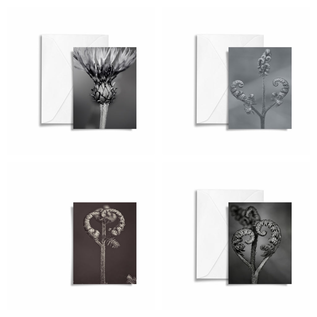 Spring Bloom Art Card x4