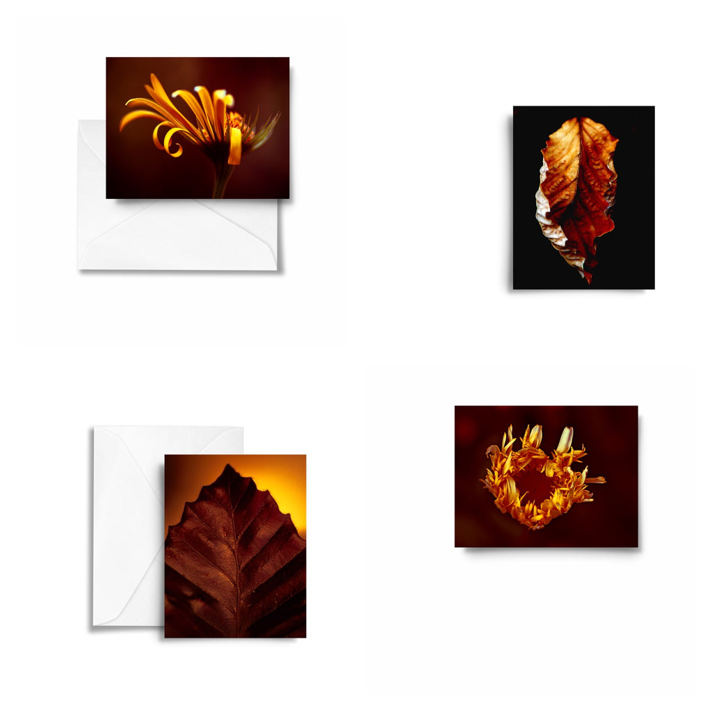 Rustic Amber Art Card x4