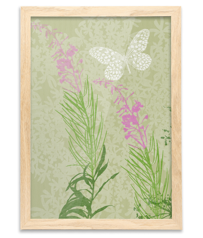 Summer Butterfly  Fine Art Print