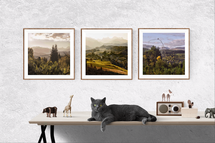 Scottish Rugged Landscape Print Set