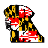 Maryland Flag Labrador Retriever Decal