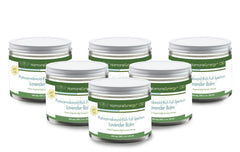 Bundle of 6 Phytocannabinoid-Rich  Full Spectrum Lavender / Eucalypus Balm - 500 mg CBD - FREE US SHIPPING!