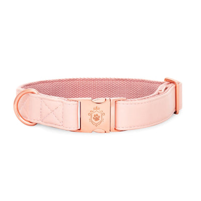 Candy Pink Collar