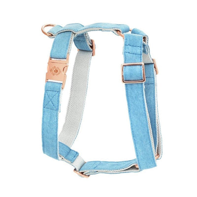 Denim | Harness