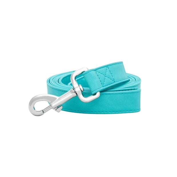 Icy Blue | Leash