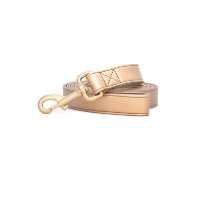 Royal Gold | Leash