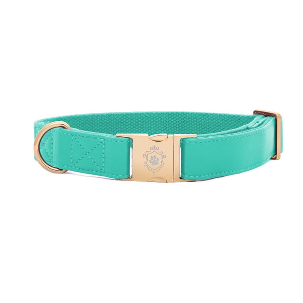 Tropical Green | Collar