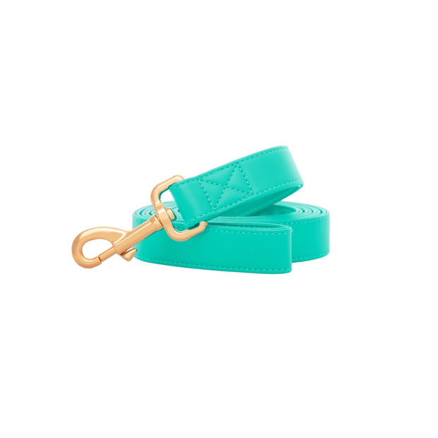 Tropical Green | Leash