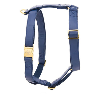 Royal Blue | Harness