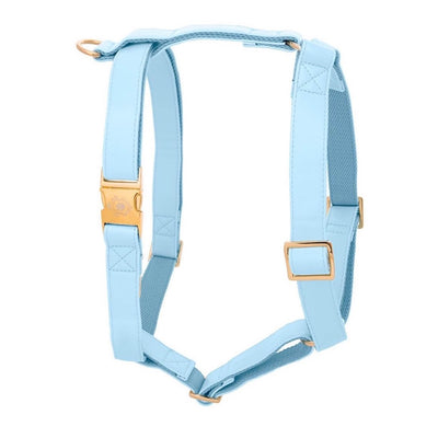 Baby Blue | Harness
