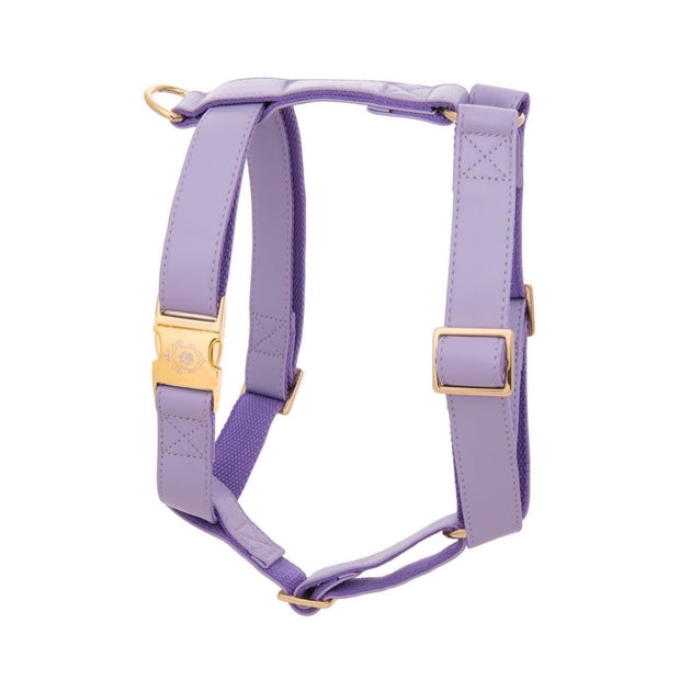 Purple Lilac | Harness