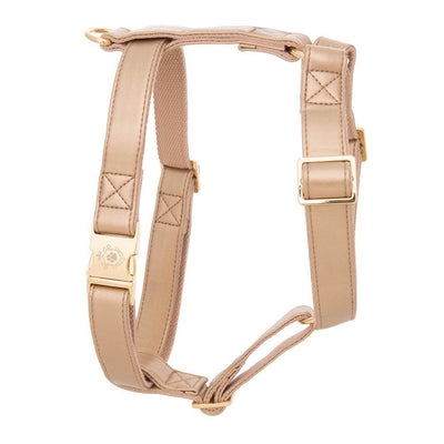 Royal Gold | Harness