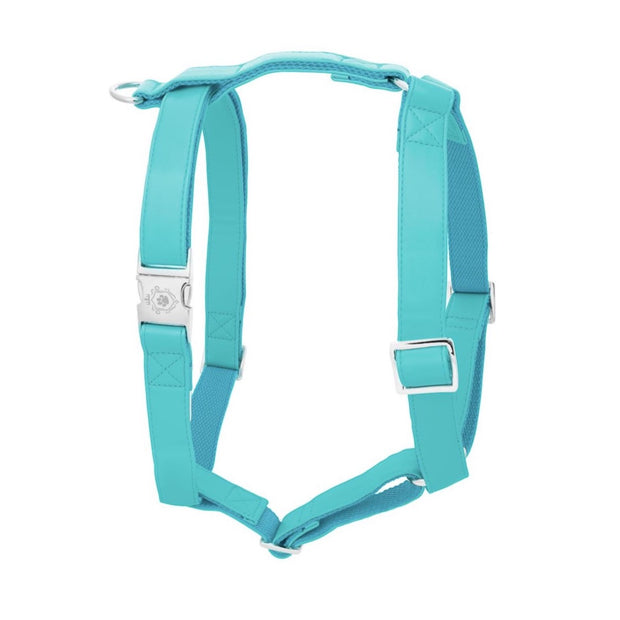 Icy Blue | Harness
