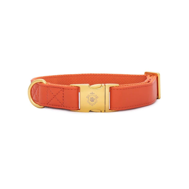 Pumpkin | Collar