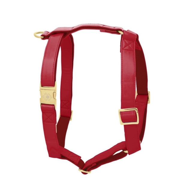 Maple Leaf | Harness