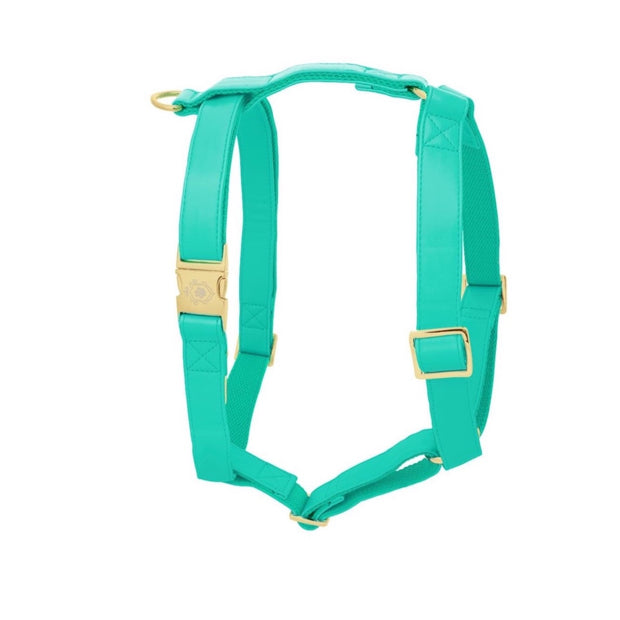 Tropical Green | Harness