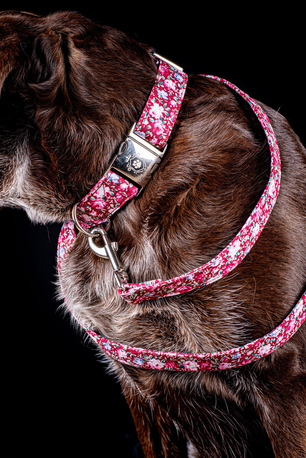 Rosa Collar & Leash Set