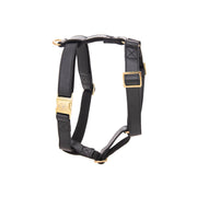 Dark Knight Gold | Harness