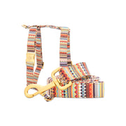 Kwahu Leash & Harness Set