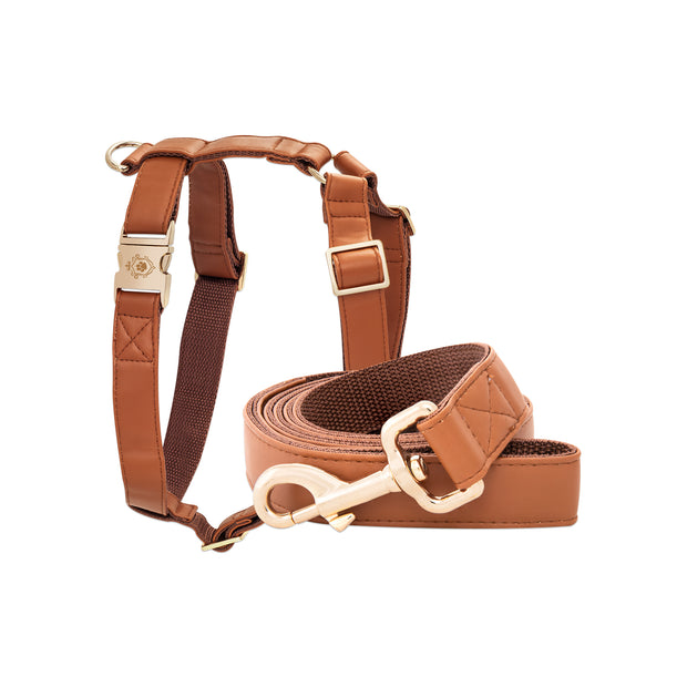 Calvados Leash & Harness Set