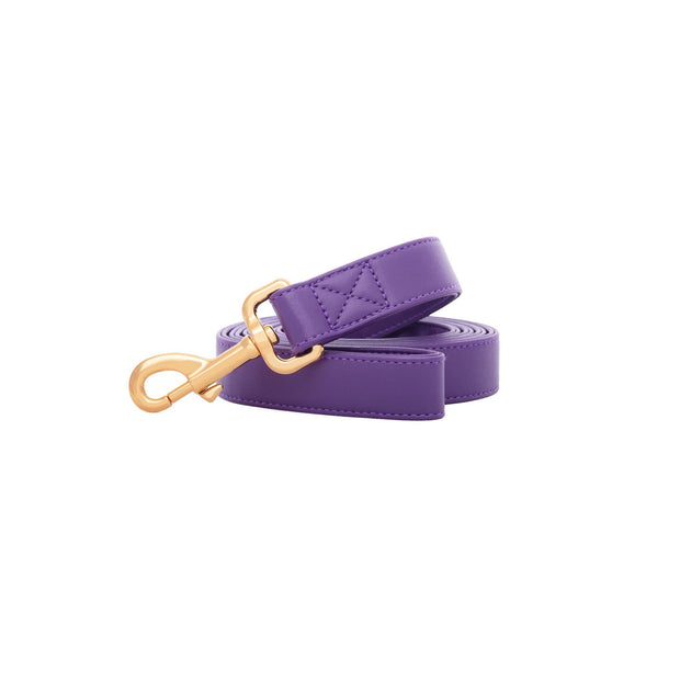 Purple Lavender | Leash