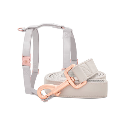 Quartz Leash & Harness Set