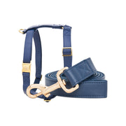 Royal Blue Leash & Harness Set