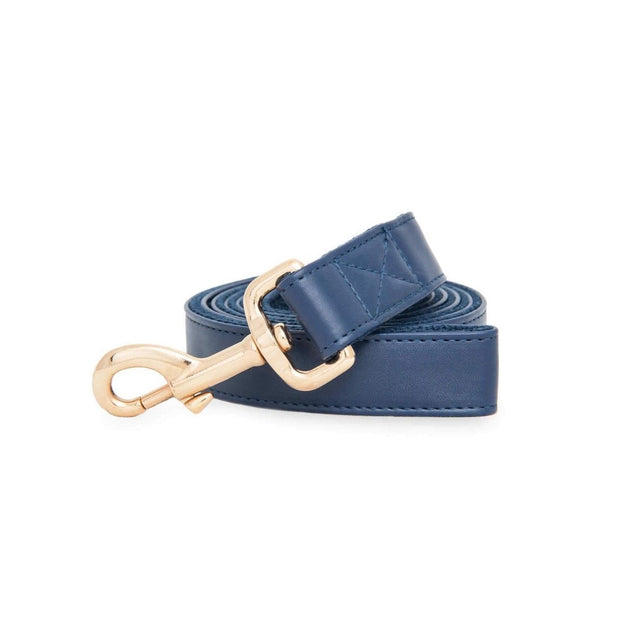 Royal Blue | Leash