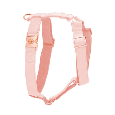 Candy Pink | Harness