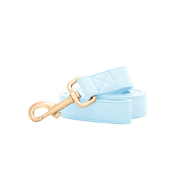 Baby Blue | Leash