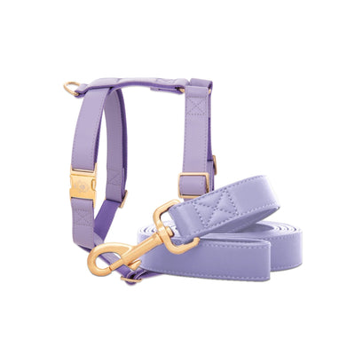 Purple Lilac Leash & Harness Set