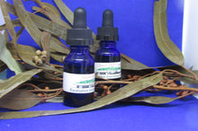 Eucalyptus microtheca Essential oil