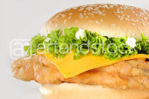 ID 104 Chicken Burger with Lettuce and Cheese - Artandstock