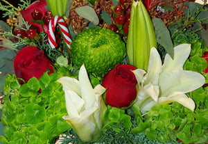 Holiday Special Blooms w/ EverGreens