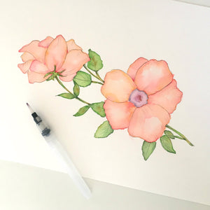 Pink Poppy Watercolor Process