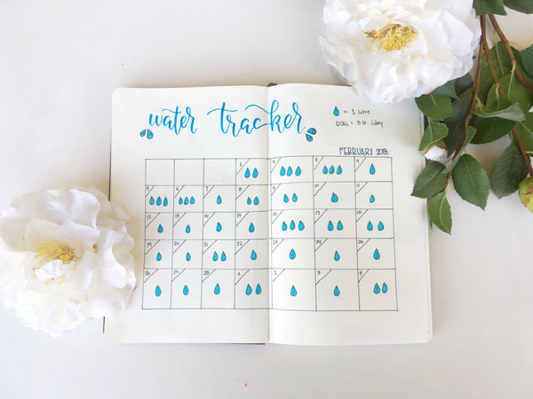 My planner entry: Water Tracker
