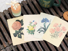 Botanical Herbal Handmade Postcard Set, 30 units